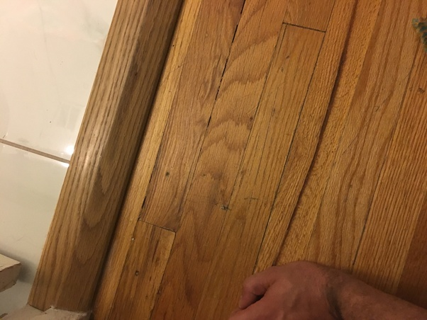 How To Lighten Dark Stain On Wood Floors Review Home Co