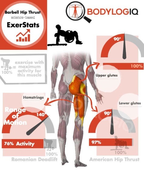What are the best exercises for glutes? - Quora