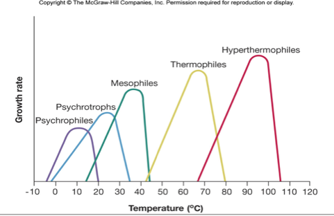 what is the ideal temperature range for bacterial growth? preparate eficiente împotriva viermilor