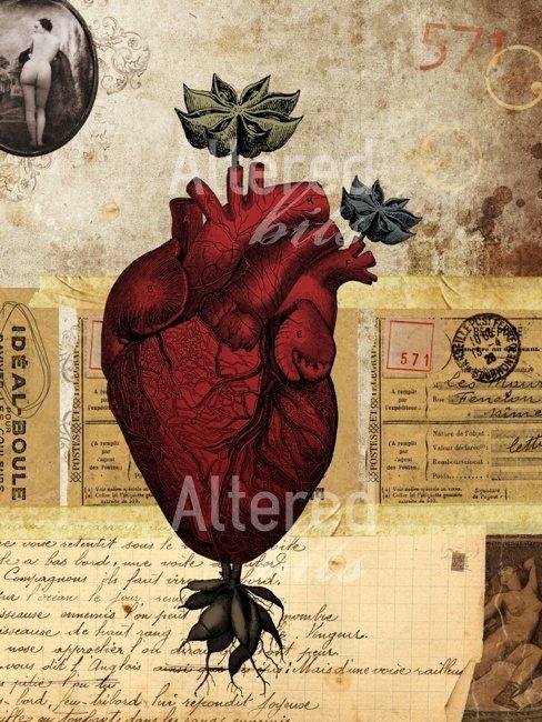 Where Did The Shape Of The Heart Originate Quora