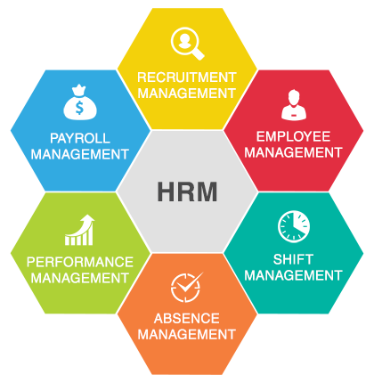 what are the five functions of the human resources department Core functions of human resource management the responsibility of the human resources department in regard to employee development primarily pertains to.