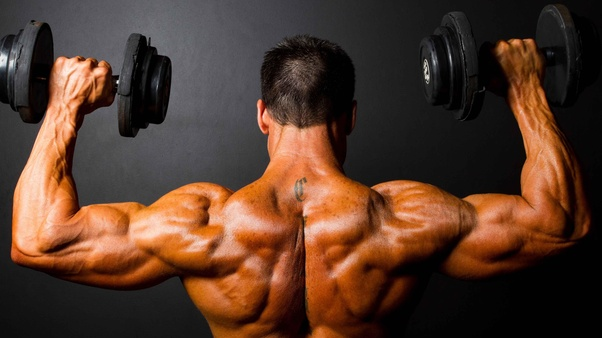 Is it possible to gain muscles at the gym without supplements? - Quora