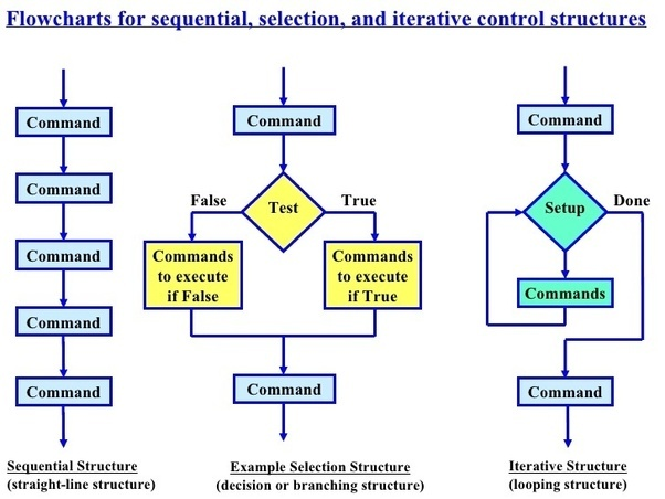 sequential and selection process control structure essay Sequential and selection processing control structure appendix g sequential and selection process control structure in the following example, the second line of the table specifies that tax due on a salary of $200000 is $22500 plus 16% of excess salary over $150000 (that is, 16% of $50000.