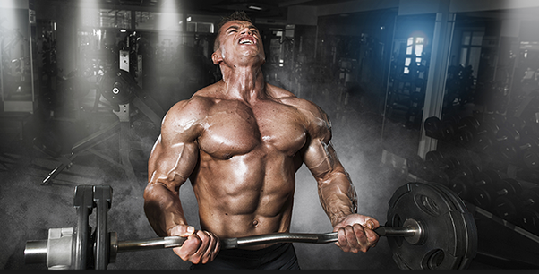 Does a SARMs cycle require a PCT? - Quora