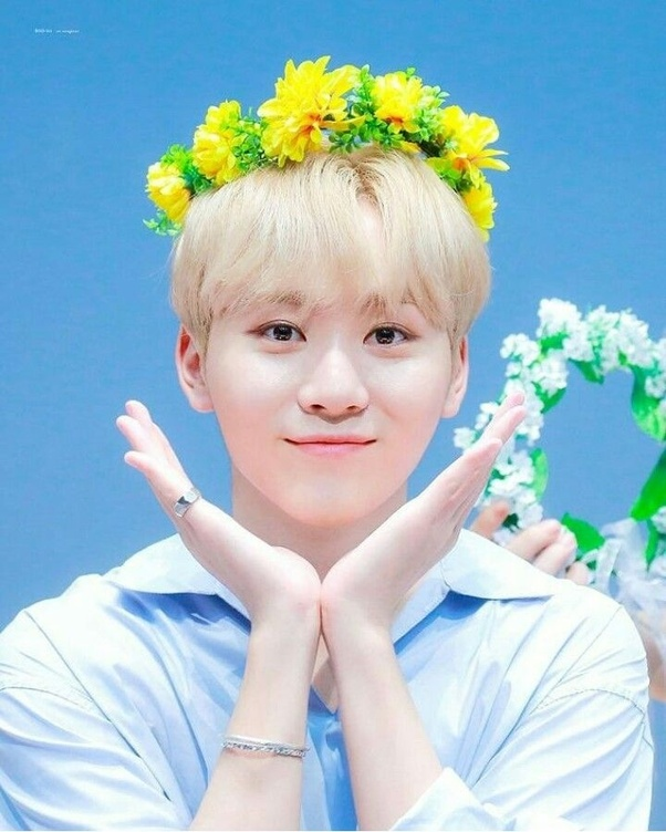 Who Are The Cutest Hottest Seventeen Members Quora