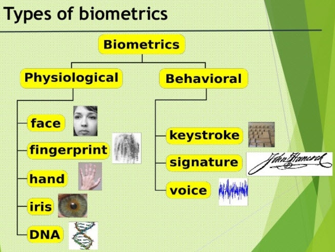 Which are the different types of biometric and access control? - Quora