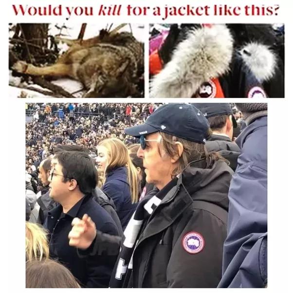 canada goose jacket vegan