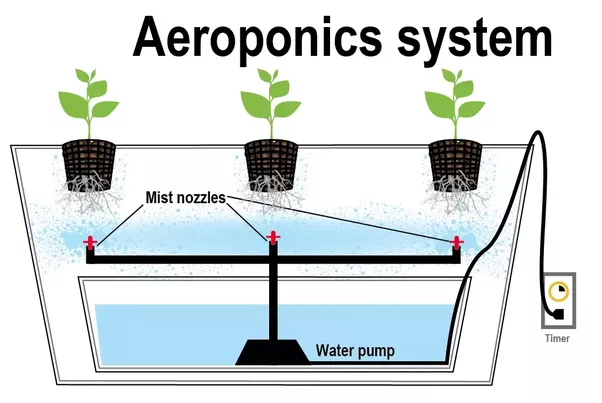 how does aeroponic vertical farming function quora. Black Bedroom Furniture Sets. Home Design Ideas