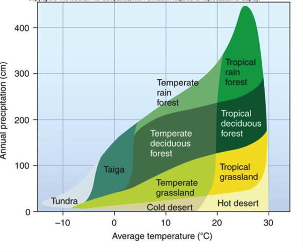 Cosa accadrebbe se il clima nella valle della morte o nel Mojave cambiasse improvvisamente in modo umido e piovoso?