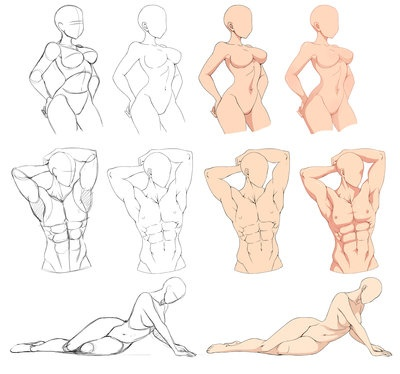 What Is The Best Way To Practice Drawing Anatomy I Draw Animemanga
