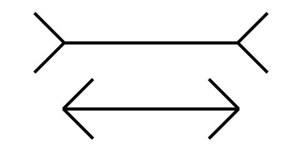 optical illusions illusion draw easy lines simple lyer muller length line mueller square parallel tilted perception why vision arrow equal