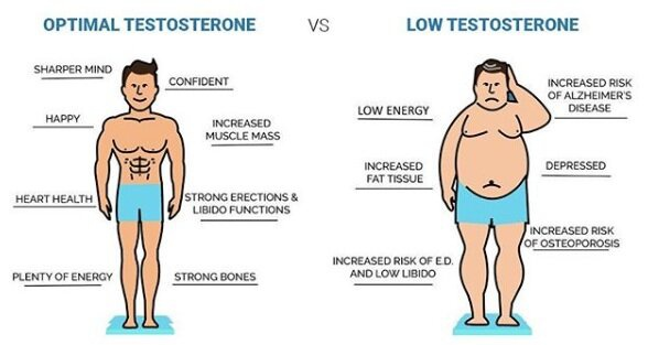 Testosterone naturally levels male raise Top 50