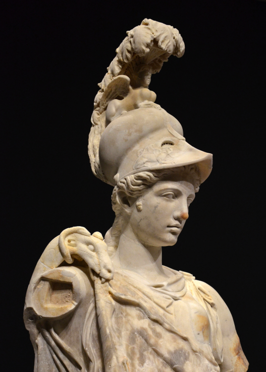 What are some important facts of Athena the goddess of ...