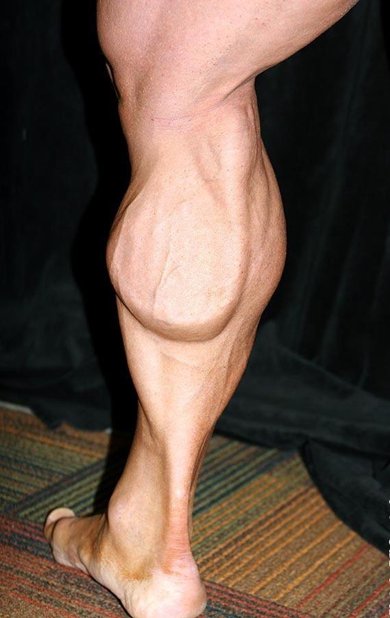 Why Are Calf Muscles Difficult To Grow Bigger Quora