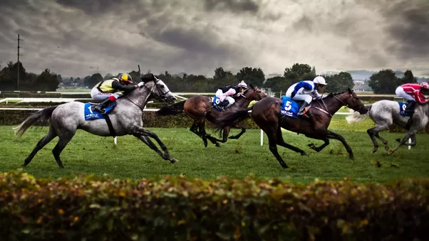 Tips on betting on horses gaming betting