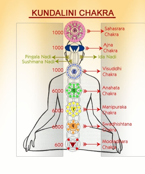 Image result for kundalini