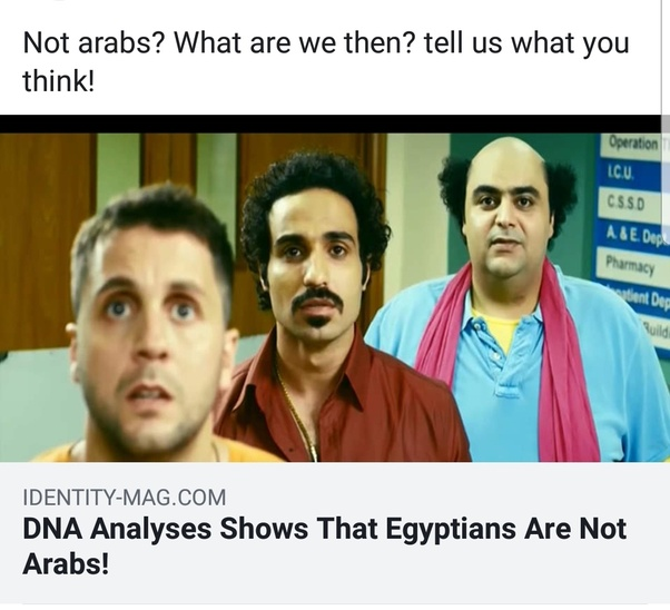 Are Egyptians really Arabs? - Quora