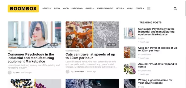 What is the best wordpress theme with good documentation to use for boombox is all purpose viral magazine theme with a top notch design and extremely customisable layout full of viral snacks and exclusive features cheaphphosting Images