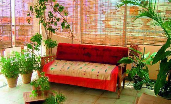 They Are Cheaper And Naturally Keep The Place Cool. They Have Good  Fragrances Which Make The Atmosphere Around Pleasant The Area.