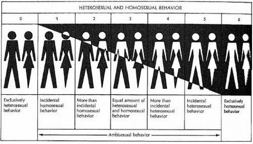 Kin selection hypothesis homosexuality and christianity