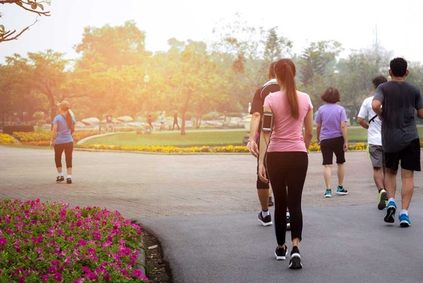 What are the advantages of morning walk/jog? - Quora