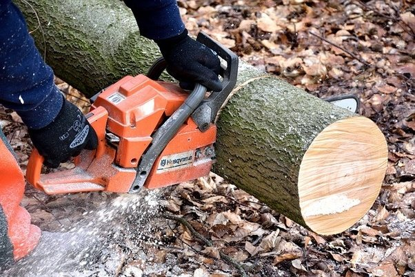 How to find the best chain saw manufacturers quora husqvarna chainsaw models and the differences between them i personally prefer husqvarna as for the same quality you get a much better price greentooth Images