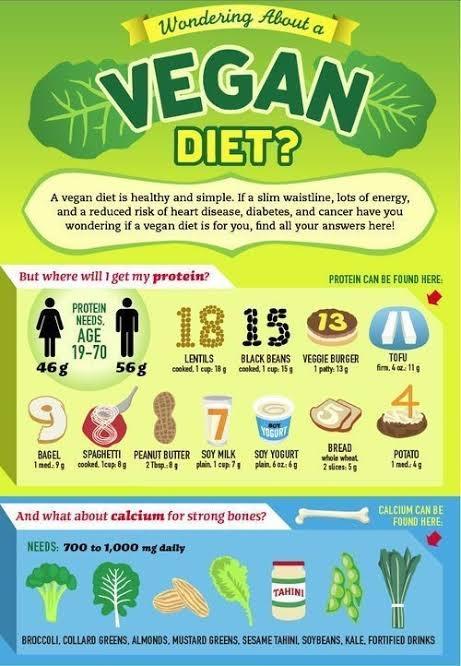 vegan diet weight loss plan
