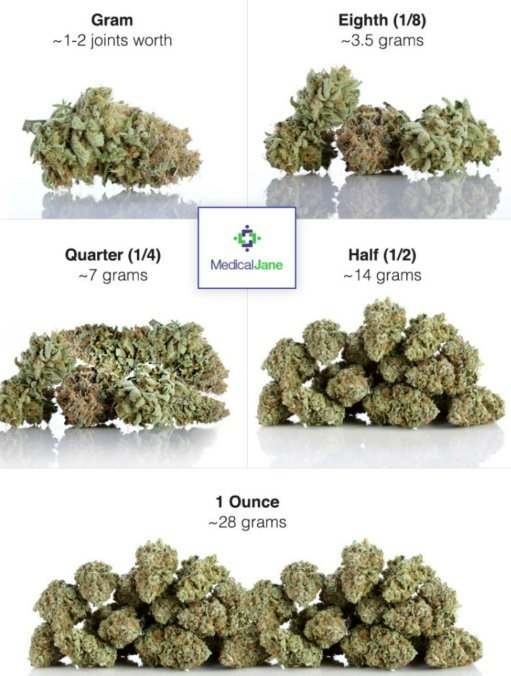 WHAT DOES MARIJUANA LOOK LIKE? A BROWN, GREEN, OR... | …