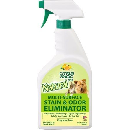 removing cat urine smell