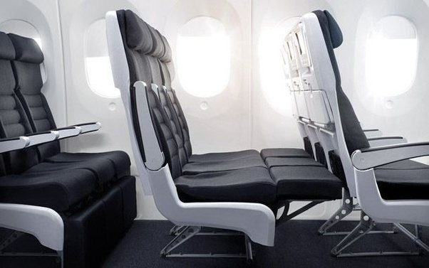 In Any Case, Air New Zealand Does Offer Something Similar To This Without  Sacrificing Valuable Space For Seats In Its Economy Skycouch™: