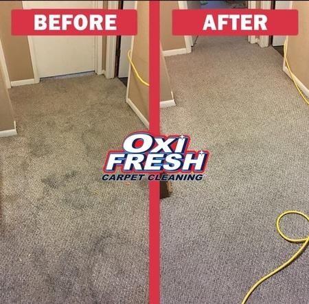 How Will Oxiclean Bleach My Carpet Quora