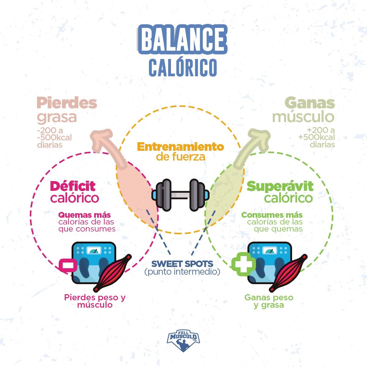 dietas para adelgazar sin perder masa muscular