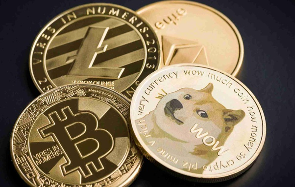 dog coins vs bitcoins for sale
