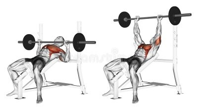 Does incline bench press get you stronger for bench press
