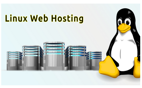 All You Need to Know About Linux Web Hosting