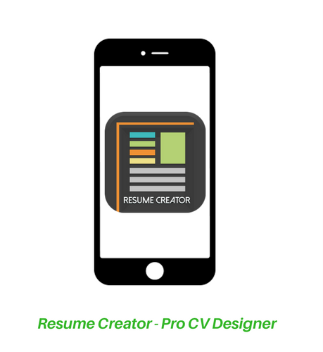 Which is the best professional resume builder for an experienced IT ...