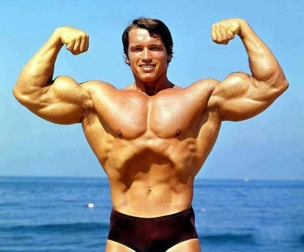 How to improve my bicep height quora notice how his right biceps appears much different from his left thats genetics now look at a photo of sergio oliva notice how huge his arms were altavistaventures Choice Image
