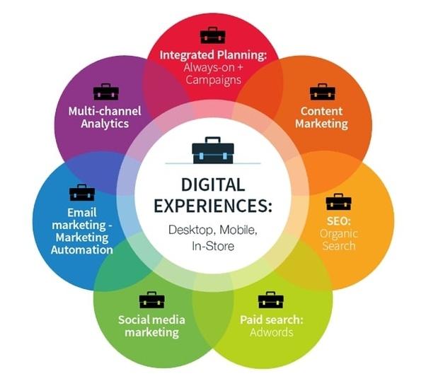 expertise in digital marketing