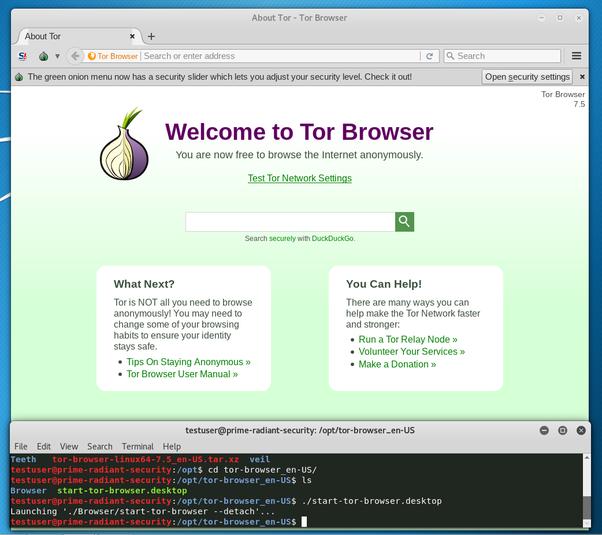 tor browser not starting попасть на гидру