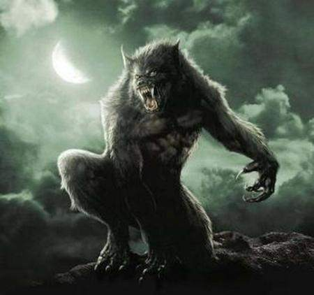 Image result for werewolf