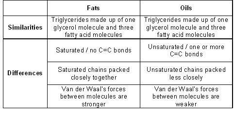 relationship between fatty acids and lipids cholesterol