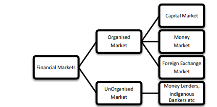 characteristics of indian capital market