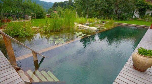 How Much Does It Cost To Build A 15x5 Swimming Pool In India Quora