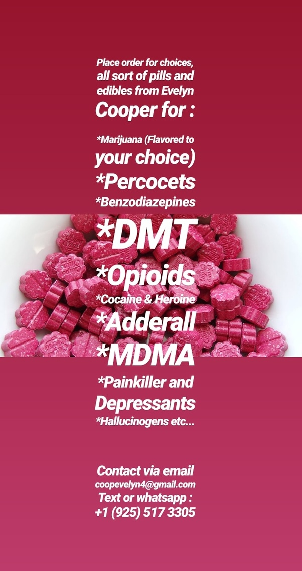 You Can Rely On PlanetDrugsDirect