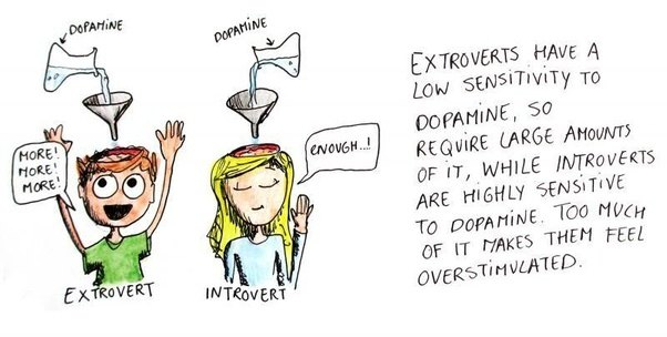 Why is some people can have introvert or extrovert even ...