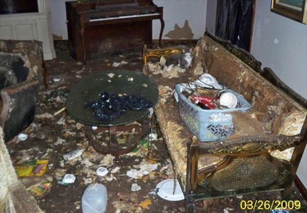 Incredible What Is Your First Thought When You Walk Into A Filthy Home Home Interior And Landscaping Spoatsignezvosmurscom