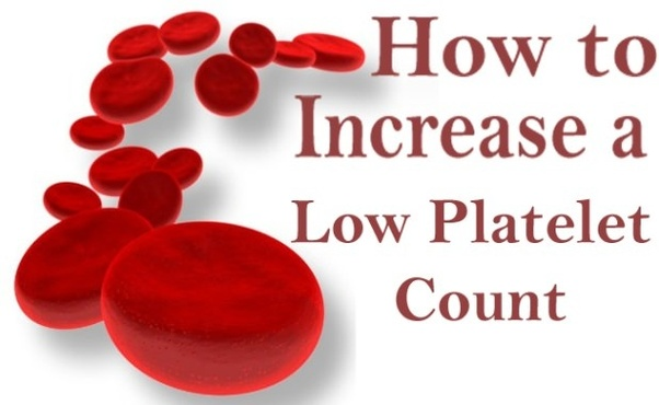 How to raise my platelet counts - Quora