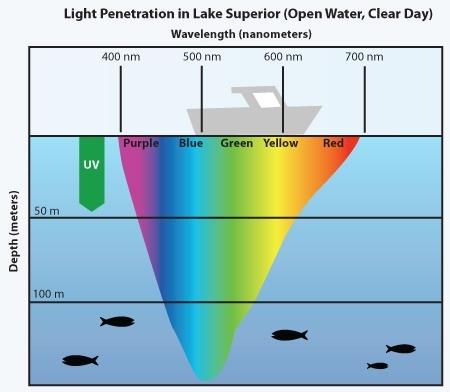 best water penetrate Light that wavelengths