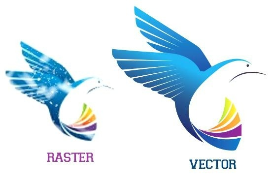 what is vector tracing how do i turn a raster image into a vector