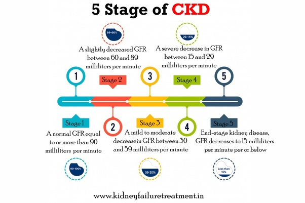 Why Is Chronic Kidney Disease More Common In Young Individuals Nowadays Quora